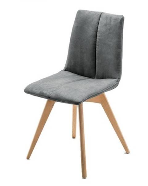 Sconto Jedálenská stolička SANNE sivá