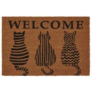 Rohožka Welcome Cats, 40/60cm, Hnedá