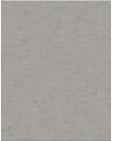 Frodo koberec 80x125 cm sivá