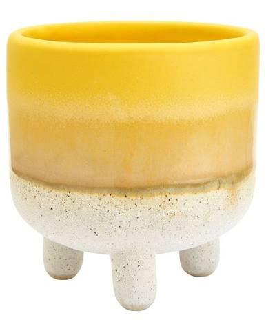 Žlto-biely kvetináč Sass & Belle Bohemian Home Mojave, ø 7,5 cm