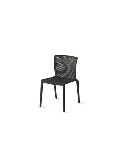 Plastová Stolička Spiker Čierna