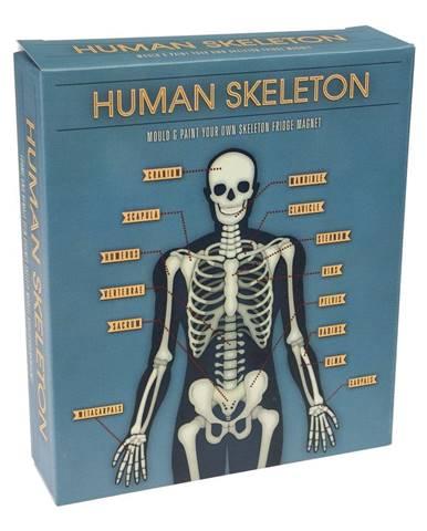 Skladací magnet svietiaci v tme Rex London Dark Skeleton Magnet