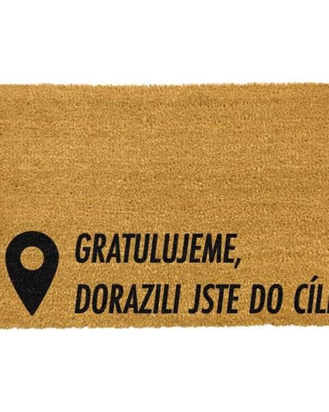Artsy Doormats Rohožka z prírodného kokosového vlákna Artsy Doormats Cíl, 40 x 60 cm