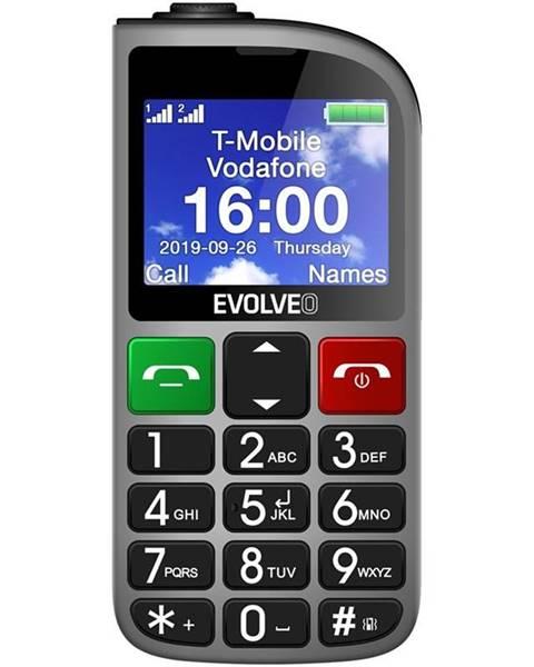 Evolveo Mobilný telefón Evolveo EasyPhone FM strieborný